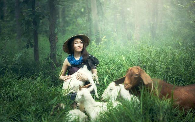 Genç Çiftçi