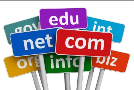 domain web site
